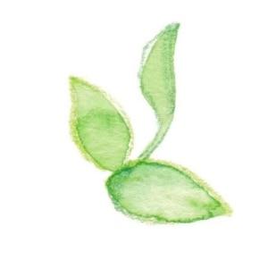 mini-flower-green