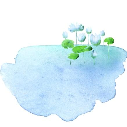 隆波帕默尊者法谈开示|2017年